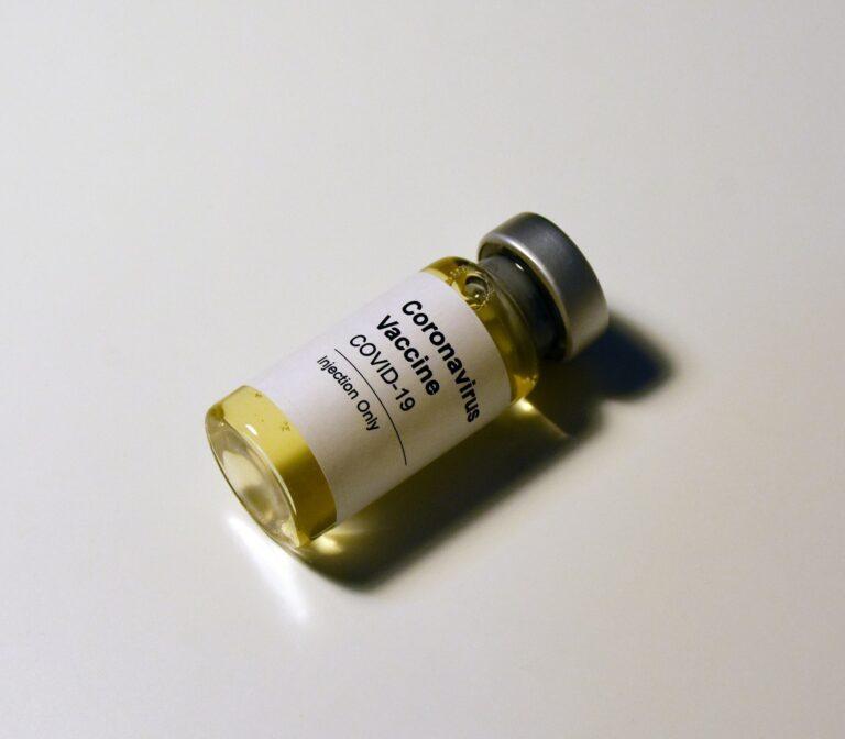 Le vaccin COVID-19 va devenir le «Passeport» le plus puissant au monde en 2021
